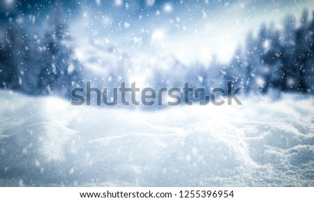 Winter background of snow and frost with free space for your decoration  #1255396954
