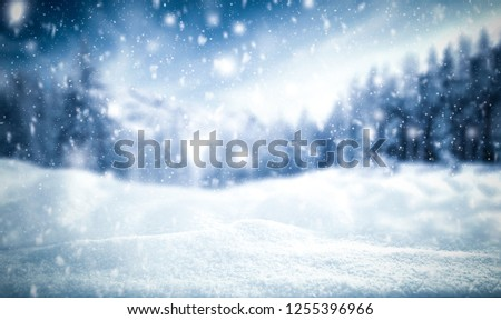 Winter background of snow and frost with free space for your decoration  #1255396966
