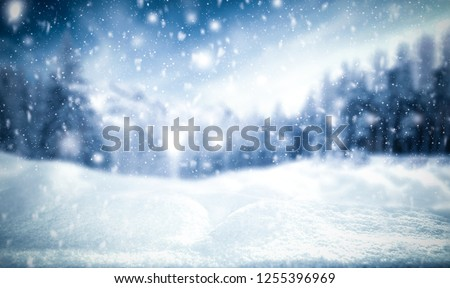 Winter background of snow and frost with free space for your decoration  #1255396969