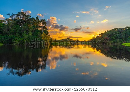 Reflection of a sunset by a lagoon inside the Amazon Rainforest Basin. The Amazon river basin comprises the countries of Brazil, Bolivia, Colombia, Ecuador, Guyana, Suriname, Peru and Venezuela. #1255870312