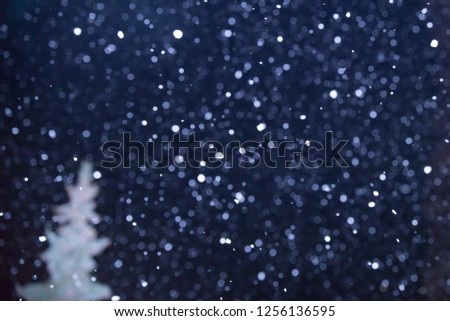 SNOW FLAKES FALLING AT NIGHT WITH THE TREE SILHOUETTE, CHRISTMAS BACKGROUND