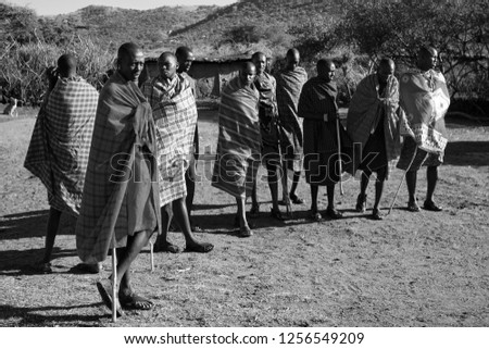 Unidentified Maasai men on Oct 15, 2012 in the Maasai Mara, Kenya. Maasai are a Nilotic ethnic group of semi-nomadic people located in Kenya and northern Tanzania. #1256549209