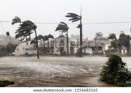 A flooded street after catastrophic Hurricane Irma hit Fort Lauderdale, FL. #1256683165