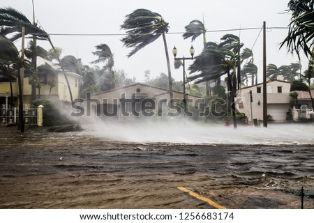A flooded street after catastrophic Hurricane Irma hit Fort Lauderdale, FL. #1256683174