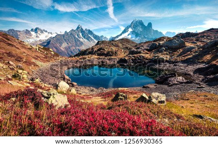 Superb autumn view of Chesery lake/Lac De Chesery, Chamonix location. Incredible outdoor scene of Vallon de Berard Nature Preserve, Graian Alps, France, Europe. #1256930365