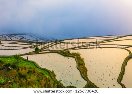 Yuanyang Rice Terrace,the triditional Chinese agriculture project,shot at sunrice with cloud. #1256938420