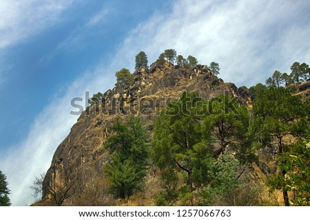Rocky cliff in the Sivalik mountains, Lesser Himalaya. Selected Himalayan pine trees on the mountainside, springtime #1257066763