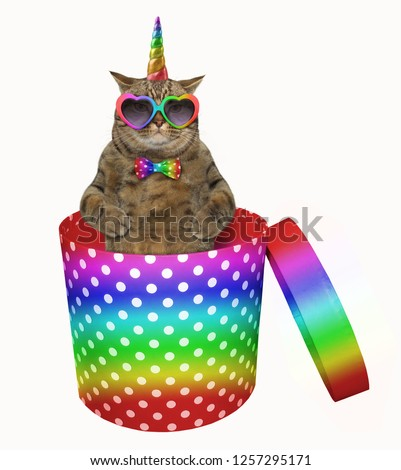 The cat unicorn in rainbow sunglasses and a bow tie is inside a cylindrical polka-dot gift box. White background.