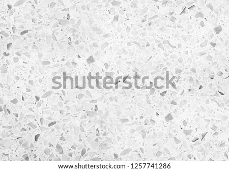 terrazzo flooring or marble monochrome old. polished stone texture beautiful for background pattern wall and color gray beautiful with copy space add text #1257741286