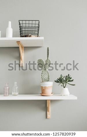 Minimal modern interior design. Cactus in flowerpot at pastel wall. #1257820939