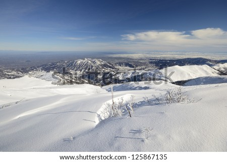 Wide angle view of the alpine arc in Piedmont, Italy, with frozen bush in the foreground #125867135