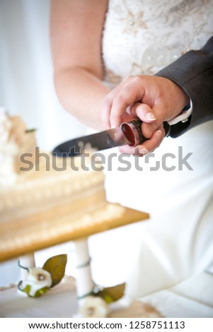 A close up of the bride and groom cutting the wedding cake #1258751113