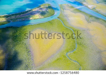 Heart of Voh, aerial view, formation of mangroves vegetation resembles a heart seen from above, New Caledonia, Melanesia, South Pacific Ocean. Heart of Earth. Earth day. Love life, save environment.  #1258756480