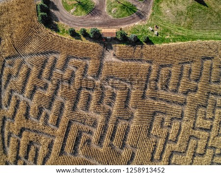 Aerial View of a Corn Maze in Eastern South Dakota during October #1258913452
