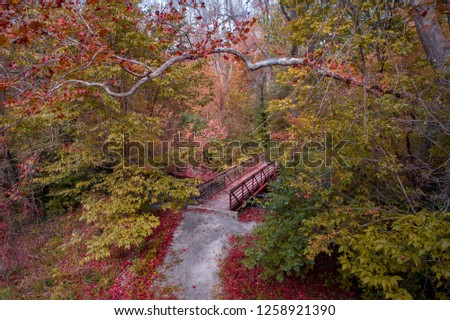 Autumn Crossing - trees changing color around the little bridge in the woods showing the autumn colors to brighten the path.  Photo was taken with a drone in a woods in Beavercreek, Ohio. #1258921390