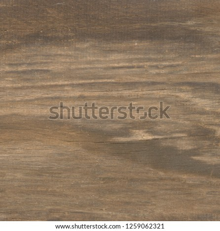 rough old wood background #1259062321