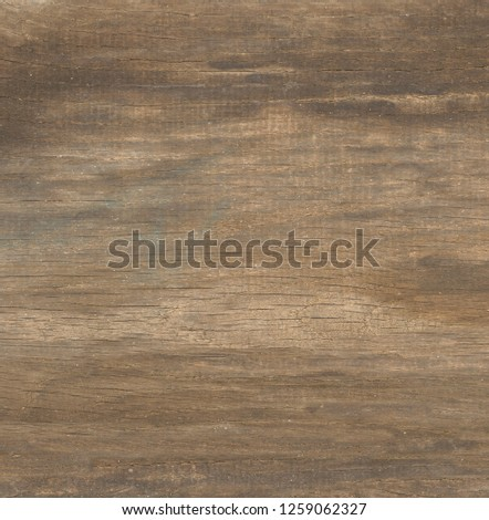 rough old wood background #1259062327