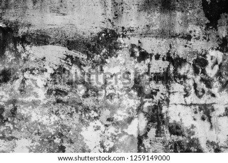 mildewed wall background, grunge texture of dirty cement wall #1259149000