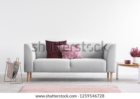 Lilac and burgundy pillows on grey settee in bright living room with heather on coffee table and copy space on the empty white wall #1259546728
