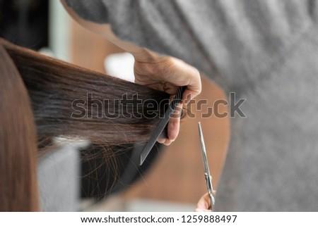 Female hair cutting by hairdresser at salon #1259888497