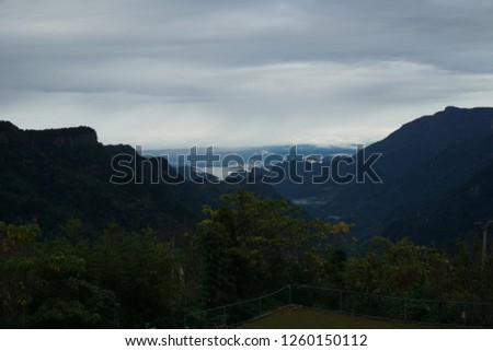 Taiwan forest mountain area #1260150112