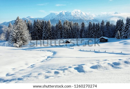 Winter wonderland in the snowy Alps of Austria #1260270274