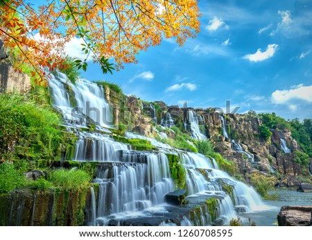 Mystical waterfall with foreground is autumn leaves in the Da Lat plateau, Vietnam. This is known as the first Southeast Asian waterfall in the wild attracted many tourists to visit #1260708595