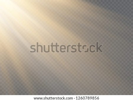 White glowing light explodes on a transparent background. Vector illustration of light decoration effect with ray. #1260789856