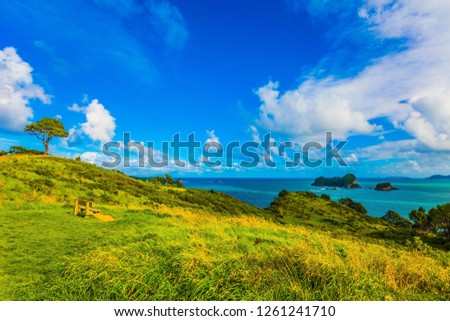 Cumulus clouds in the blue sky over the ocean. Sunset. New Zealand, North Island. The concept of active and phototourism #1261241710