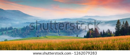 Foggy morning panorama of mountains valley. Attractive summer sunrise in Carpathian mountains, Rika village location, Transcarpathian, Ukraine, Europe. Beauty of nature concept background.