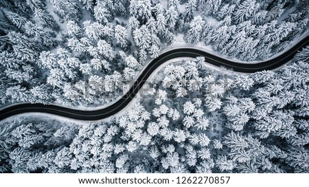 Curvy windy road in snow covered forest, top down aerial view. #1262270857