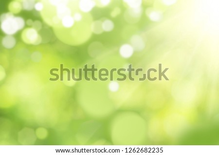 Bright glowing green nature background in the form of bokeh #1262682235