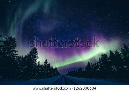 Colorful polar arctic Northern lights Aurora Borealis activity in winter Finland, Lapland #1262838604