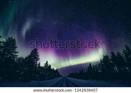 Colorful polar arctic Northern lights Aurora Borealis activity in winter Finland, Lapland #1262838607