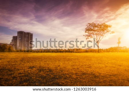 Sunny morning and Eiffel Tower in autumn, Paris, France #1263003916