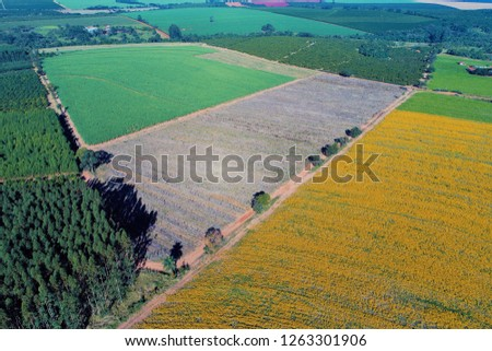 Beautiful countryside aerial view. Agribusiness, livestock, pasture, cattle. Great landscape. Rural scene. Agriculcure scene. Farm scene. Field scene. Countyside view. Wallpaper. #1263301906