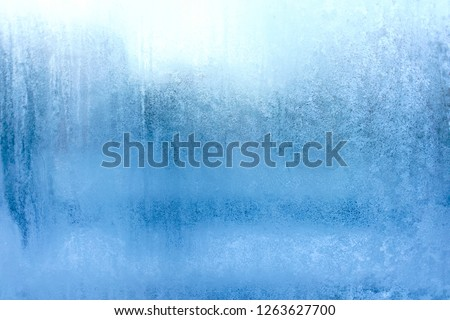 Blue Frost Background, Closeup Frozen Winter Window Pane Coated Shiny Icy Frost Patterns, Extreme North Low Temperature, Natural Ice Pattern on a Frosty Glass #1263627700