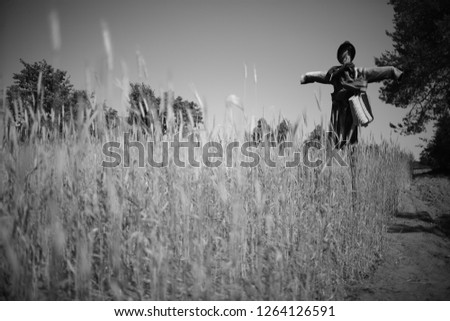 Vintage countryside landscape with scarecrow #1264126591