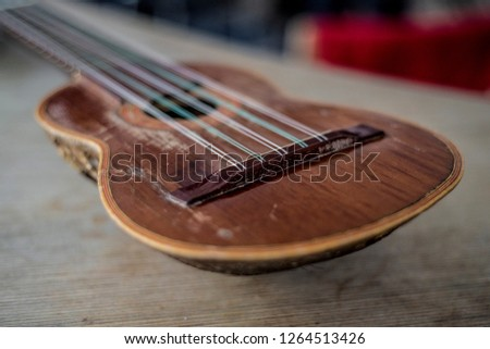 Beautiful and diverse subject. Beautiful and stylish musical instrument in the form of a guitar or a mandolin, made of animal armadillo in the interior.
