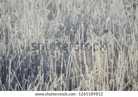 Beautiful winter landscape #1265189812