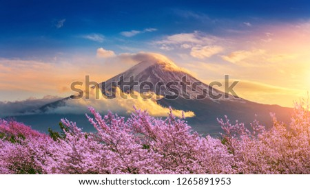 Fuji mountain and cherry blossoms in spring, Japan. #1265891953