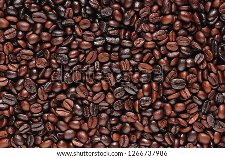 Coffee beans. Roasted coffee beans, can be used as a background. Coffee background close up. #1266737986