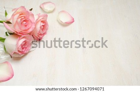 pink roses and lace and petals on wooden white background selective focus #1267094071