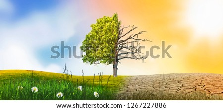 dry land tree climate change #1267227886