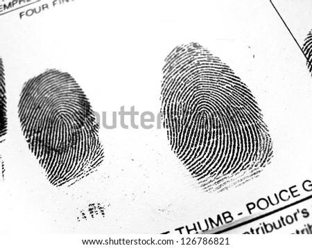 Fingerprint #126786821