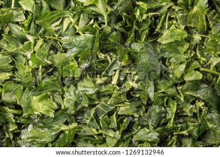 Sliced frozen parsley #1269132946