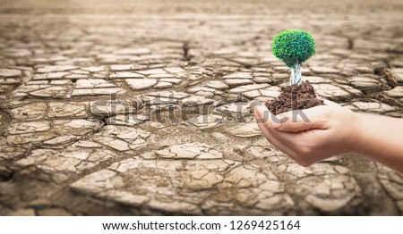 World Day to Combat Desertification and Drought concept: Part of a Huge Area of Dried Land Suffering from Drought Royalty-Free Stock Photo #1269425164