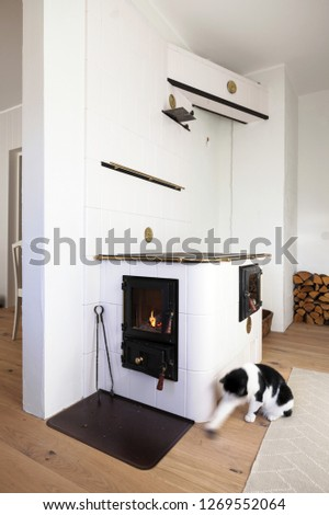 Homely scene with black and white cat playing next to wood burning stove. Cat motion blur. #1269552064