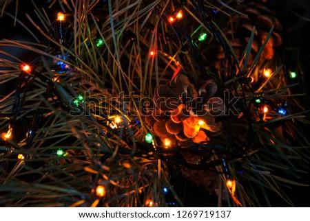Christmas tree branch and lights. #1269719137