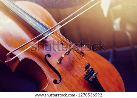 Color detail of a vintage double bass playing the double bass #1270536592